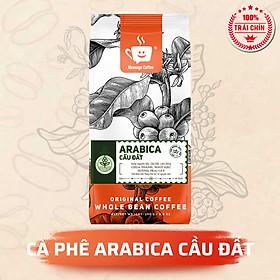 Cà Phê Arabica Cầu Đất Nguyên Chất Rang Mộc Đặc Biệt, Hậu Vị Ngọt Đậm Hương Trái Cây, Hạt Pha Máy Xay Pha Phin Ngon Từ Nông Trại Message Coffee