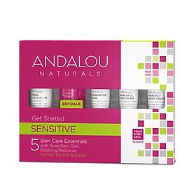 Bộ Kit 5 Bước Chăm Sóc Da Nhạy Cảm Mini Andalou Naturals Sensitive Get Started Kit