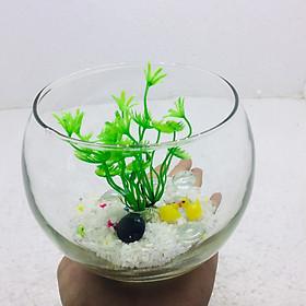 Bể cá mini để bàn tròn có phụ kiện