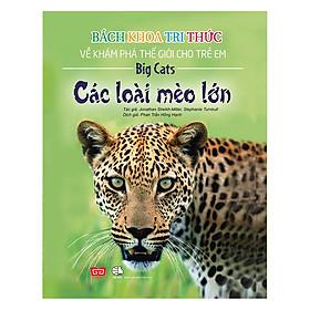 Bách Khoa Tri Thức Về Khám Phá Thế Giới Cho Trẻ Em - Các Loài Mèo Lớn (Tái Bản 2018)
