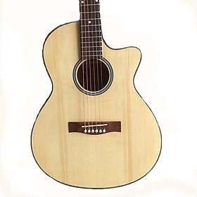 Đàn guitar acoustic cho người mới tập SV650A