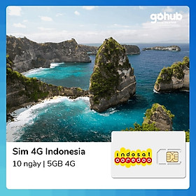 Sim Indonesia 10 Ngày 5GB