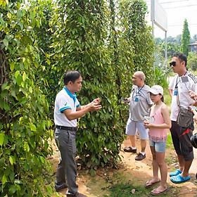 [Phú Quốc] Tour Nam & Đông Đảo 01 Ngày, Khởi Hành Hàng Ngày