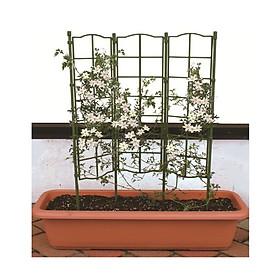 KHUNG HOA LEO  - KHUNG TRỒNG CÂY LEO, CÀ CHUA BI - Dùng làm khung giá đỡ cho cây hoa leo, hoa hồng leo, cà chua