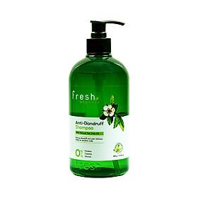 Dầu Gội Tràm Trà Ngừa Gàu Fresh Organic Anti-Dandruff Shampoo With Natural Tea Tree Oil 500g