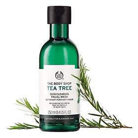 Sữa Rửa Mặt Tea Tree Skin Clearing Facial Wash (250ml)