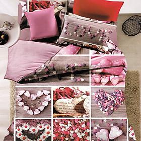 Hình đại diện sản phẩm Bộ Chăn Ga Gối Home Sweet Home SWEETDREAM (New) - Heart Love