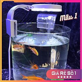 Bể cá mini để bàn tròn D20H30 COMBO Hồ-Lọc-Đèn kèm phụ kiện tiểu cảnh
