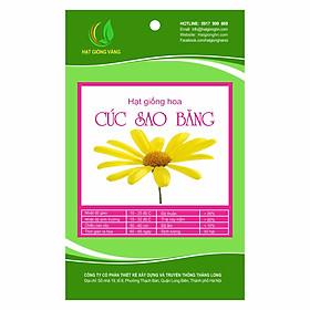 Hạt giống hoa Cúc sao băng Golden Seeds 50 Hạt