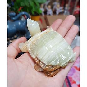 Cụ Rùa bằng đá Pakistan thiên nhiên size 8cm - giao vân đá ngẫu nhiên
