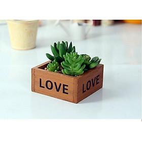 Chậu gỗ trồng sen đá, xương rồng - chậu in chữ LOVE