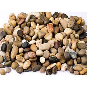 1kg đá sỏi màu hỗn hợp lớn - đá trang trí trồng cây - trang trí bể cá - sân vườn