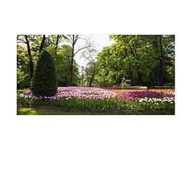 Tranh dán tường cửa sổ 3D   Tranh trang trí 3D   Tranh phong cảnh đẹp 3D   T3DMN_T6_334