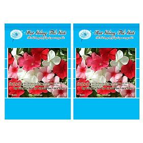 Bộ 2 Gói Hạt Giống Hoa Dừa Cạn Lùn Mix Màu (Vinca Mix) 50h