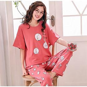 Hình ảnh Bộ đồ bầu áo cộc quần dài mặc nhà (rabbit)