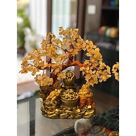 Cây Tài Lộc với tiểu cảnh thiềm thừ cóc ngậm tiền và bát tụ bảo, tụ tài, hủ vàng phong thủy đá thạch anh vàng - Cao 30 cm