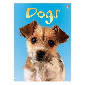 Hình đại diện sản phẩm Usborne Dogs