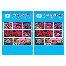 Bộ 2 Gói Hạt Giống Hoa Dạ Yến Thảo Kép - Mix Nhiều Màu (Petunia grandiflora) 5h