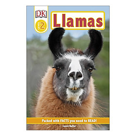 Llamas - DK Readers Level 2 (Hardback)