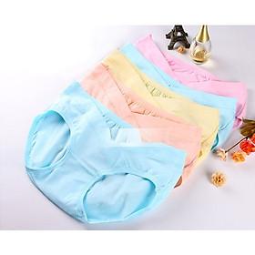 set 5 quần lót bầu lưng chữ V chất cotton co giãn
