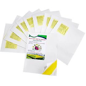 Miếng Dính Vàng Bẫy Côn Trùng Israel (Set 20 miếng 2 mặt keo, kích thước 18cm x 22cm) - Sticky Yellow Roll dùng bẫy các loại Côn Trùng Bay ngây hại rau sạch như  Ruồi, Bọ Phấn, Bọ Trĩ, Bướm và côn trùng khác...