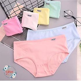 Quần lót nữ Cotton H&P Pulo Siêu Đẹp F06