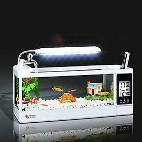 Tiểu cảnh bể cá để bàn kèm đồng hồ TG-03M
