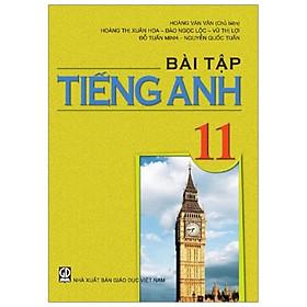 Bài Tập Tiếng Anh 11 (T9)