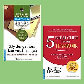 Combo 2 Cuốn Kỹ Năng Cần Thiết Cho Mọi Doanh Nghiệp: Cẩm Nang Kinh Doanh - Xây Dựng Nhóm Làm Việc Hiệu Quả (Tái Bản) + 5 Điểm Chết Trong Teamwork
