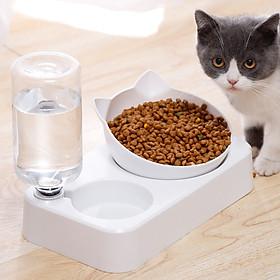 Bát ăn nghiêng kết hợp bình uống nước tự động cho chó mèo