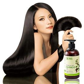 Dầu gội thảo dược HÀ THỦ Ô Chiết xuất từ 6 loại thảo dược - Cân Bằng Sắc Tố Melanin Khỏi lo bạc tóc rụng tóc Cocayhoala 300g