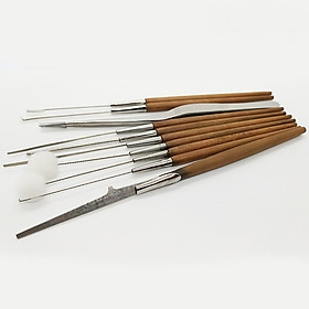 Vỉ 10 cây lấy rái tai chuyên nghiệp (Cán gỗ)