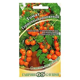 Hình đại diện sản phẩm Hạt Giống Cà Chua Bi Lùn Cam Gavrish (0.1g) - Hàng Chính Hãng