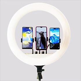 Đèn Led Hổ Trợ LiveStream ,Trang Điểm 36cm- 3 Giá Đỡ Điện Thoại