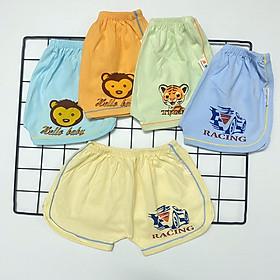 Combo 5 quần đùi cotton Màu Nhạt kiểu dáng thể thao cho bé trai, bé gái SS-TomTom002
