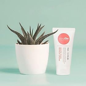 Kem dưỡng phục hồi và làm sáng da Young & Be White Plus Repair Cream 70ml