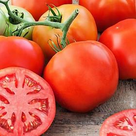 [Chỉ giao HN] - Cà chua Beef Đà Lạt
