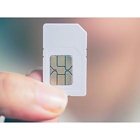 SIM DU LỊCH CANADA – 300 MB/NGÀY