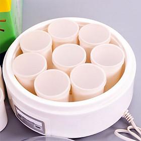 Máy làm sữa chua 8 cốc nhựa