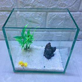 Bể cá mini để bàn 15cm tiểu cảnh 04