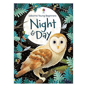 Usborne Young Beginners Night and Day