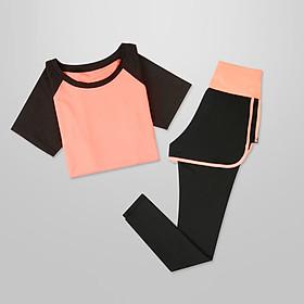Bộ quần áo tập Gym - Set quần dài và áo thun thể thao ngắn tay