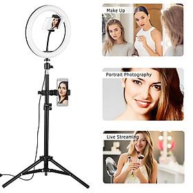 USB Plug 120pcs LED 10'' Video Ring Light Fill Lamp with Phone Holder for Live Selfie Vlog