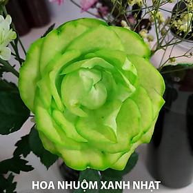 Màu Nhuộm Hoa tươi Đồi màu (Hoa Hồng, Cẩm Tú Cầu ...) theo Công nghệ Israel chai nhỏ 100ml nhuộm đổi màu hoa tươi trên 20 cành