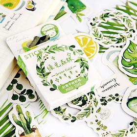 Hộp 46 Miếng Dán Sticker Trang Trí Rừng Xanh Forest
