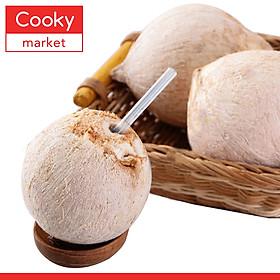 Dừa Xiêm Bến Tre - 1 Trái
