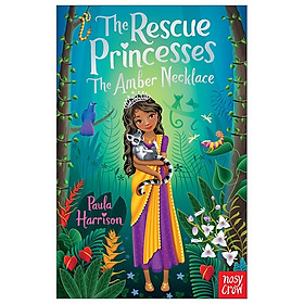 The Amber Necklace (Rescue Princesses)
