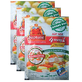 Combo 3 gói hạt nêm Neptune vị heo ( 50g / gói )