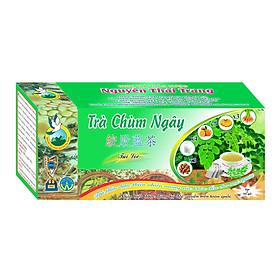 Trà Chùm Ngây (Hộp 50 Túi Lọc X 2g) - Nguyên Thái Trang - Thảo Dược Thiên Nhiên – Tốt Cho Sức Khỏe