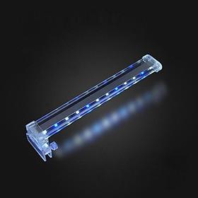 bóng đèn led,Đèn led lắp cho bể cá LED D30